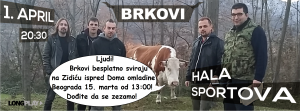 BRKOVI..Band Picture 3