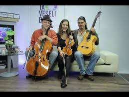 wild-strings-trio-band-picture-2