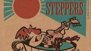HIGH STEPPERS..The Flea..Vinyl cover actual