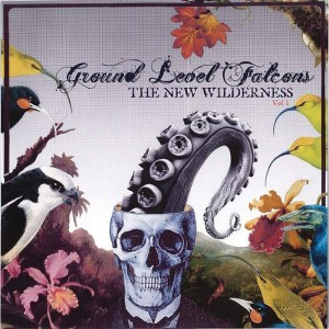 Ground Level Falcons..CDCover