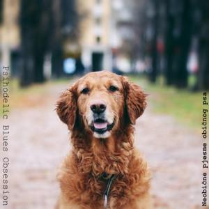 PBO..Neobicne pjesme obicnog psa..Cover
