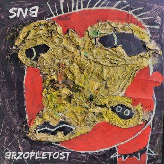 "SNB – ""Brzopletost"""