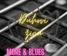 DUHOVI ZICA..More i blues..Cover