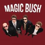 MAGIC BUSH..CDCOver