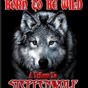 BORN TO BE WILD...logo