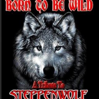 Born To Be Wild (USA)